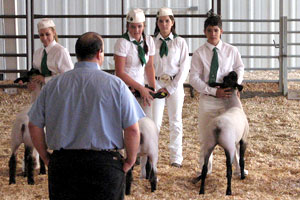 Your 4H or FFA club can benefit from raising funds using Friend Tree